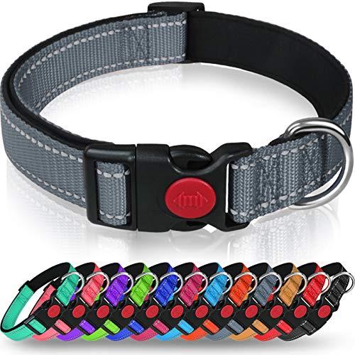 Taglory Hundehalsband, Weich Gepolstertes Neopren Nylon Hunde Halsband für Kleine Hunde, Verstellbare und Reflektierend für das Training, Grau
