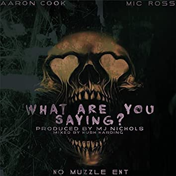What Are You Saying (feat. Mic Ross)