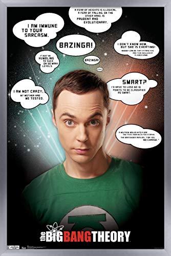 Trends International The Big Bang Theory-Quotes Póster de pared, 37,4 x 56,8 cm, versión enmarcada en plata