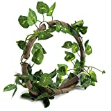 HEEPDD Reptile Vines, 3.28ft Artificial Reptile...