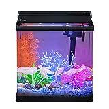 Hygger Small Betta Fish Tank with LED Lighting, 4 Gallon Desktop Aquarium Starter Kit with Lid, Filter Pump Filter Cartridges for Snail Tropical Fish