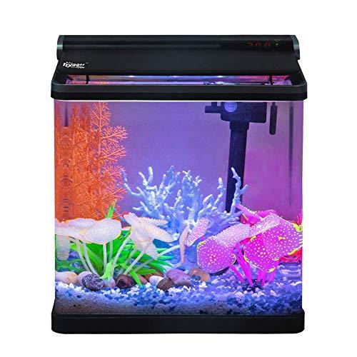 Hygger Small Betta Fish Tank with LED Lighting, 4 Gallon...