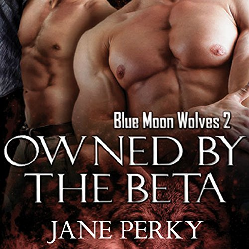 Owned by the Beta audiobook cover art