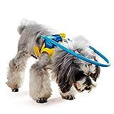 Rocomoco 盲目 犬 リング ハーネス 保護ベスト フェイスガード 犬 老犬 ペット 介護用品 衝突防止 (XXS)