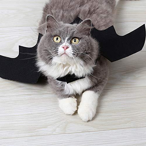 Hemore Creative Pet Bat Costume Chic Dog Ali di Pipistrello Halloween Batman Design Ali per Cani Gatti Puppy Kitten Pet Supplies