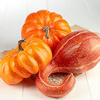 Factory Direct Craft Package of 3 Harvest Orange Artificial Gourd and Pumpkins for Halloween, Fall and Thanksgiving Decorating