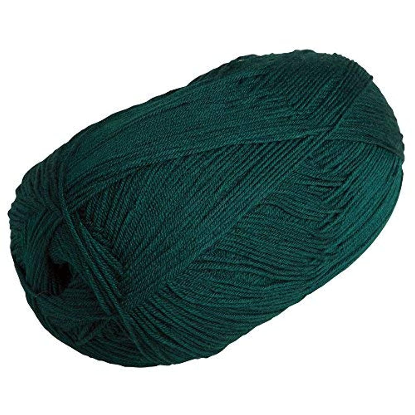 Knit Picks Brava 500 Yarn Medium Worsted Premium Acrylic 17.6 oz (Hunter)