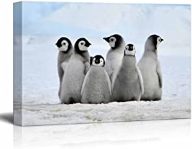 wall26 - Canvas Wall Art - Little Penguins - Giclee Print Gallery Wrap Modern Home Decor Ready to Hang - 24