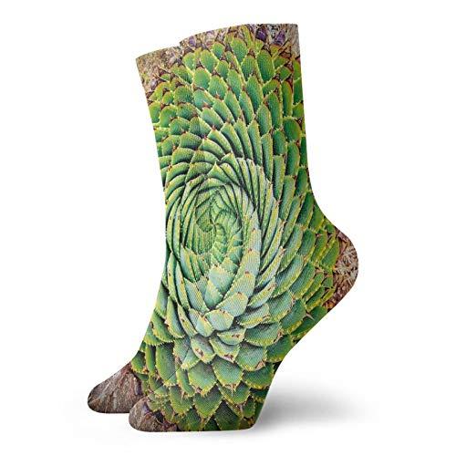 Calcetines suaves de longitud media pantorrilla, flor nacional de Lesotho del sur de África, Aloe Polyphylla Spinning Espiral Aloe Vera, calcetines para mujeres y hombres mejores para correr