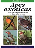 AVES EXOTICAS (GUIAS DEL NATURALISTA-AVES EXÓTICAS-PERIQUITOS-CANARIOS)