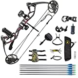 HYF Youth Compound Bow Package,USA Gordon Limbs,10-40lbs Adjustable Draw Weight,17
