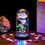 Beauty and The Beast Rose in Glass Dome LED Lights Everlasting Crystal Rose Flowers Gift Enchanted Forever Rose Romantic Birthday Gift for Her for Anniversary Valentines Wedding Girlfriend Wife Women