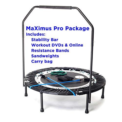 MaXimus Life Ltd -  MaXimus PRO