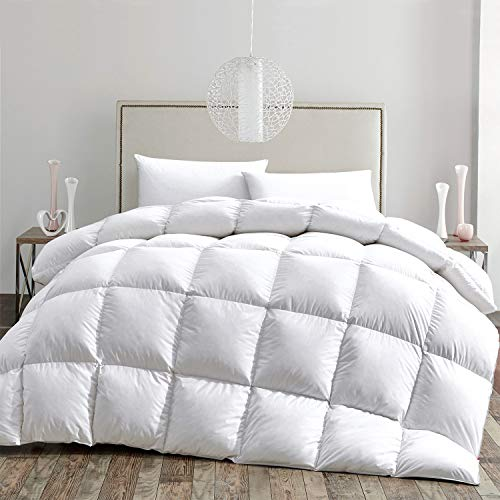 HOMBYS All Seasons Goose Down Comforter Queen Size Duvet Insert Feather Hypo-allergenic 55oz Fill Weight 100% Cotton Cover Down Proof with Corner Tabs - Down Comforter (Queen,White)