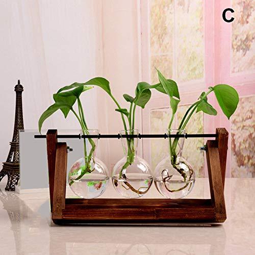 51ZTNf bMkL - Cultivez Avocats et Graines avec ces Vases en Verre à Hydroculture