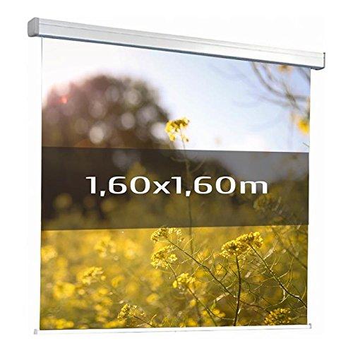 Kimex 042–3621Projektionsleinwand, elektrische 1,60x 1,60m, Format 1/1, Weiße Leinwand