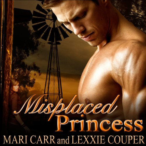 Misplaced Princess audiobook cover art