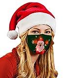 GJKK Erwachsene Mundschutz Weihnachten Weihnachten LED Licht Weihnachten 3D Druck Mund und Nasenschutz Lustig Bunt Mit Motiv Mehrweg Atmungsaktiv Damen Herren Bandana Halstuch