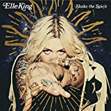Songtexte von Elle King - Shake the Spirit