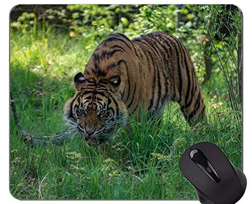 Yanteng Alfombrillas de ratón Majestic Tiger Game Office Alfombrilla de Goma Animal World