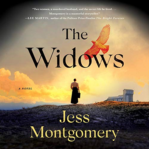 The Widows audiobook cover art