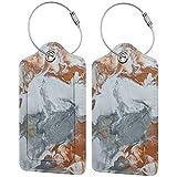 Colorido gatito abstracto pintura mármol Lage etiqueta bolsa de cuero sintético para maletas, diseño de viaje con cubierta de privacidad con bucles de acero