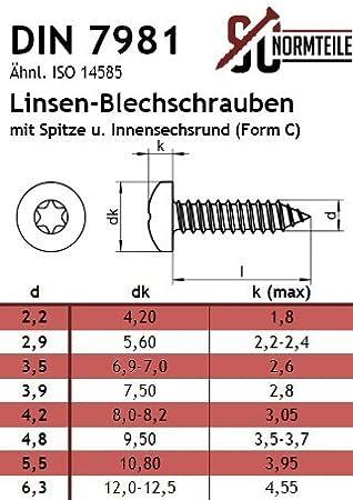 4,8x32 - 100 St/ück - Innensechsrund Antrieb TX - Form C - DIN 7981 mit Spitze - Edelstahl A2 V2A Blechschrauben mit Linsenkopf SC7981 ISO 14585
