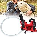 Anillo anticolisión para Perros Ciegos, Chaleco con arnés para Perros Ciegos, no para Perros y Gatos, para Mascotas con discapacidad Visual(MYFZ02 Red, S)