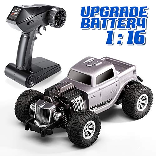 Leapdream RC Car High Speed Remote Control Car for Kids Adults Classic Grey 1:16 Scale Toy Trucks,2.4GHz All Terrain Toy Trucks