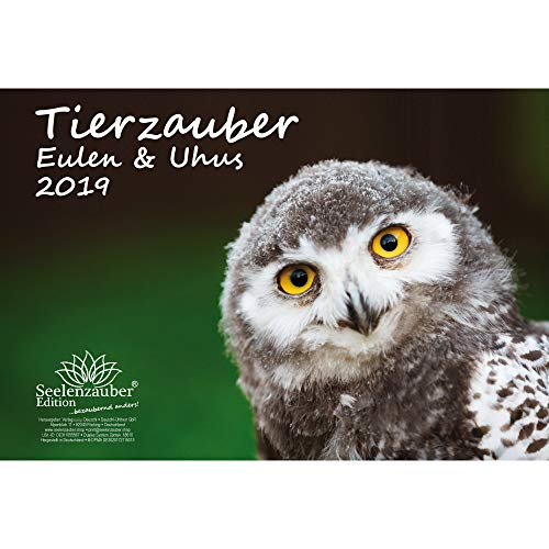 Tierzauber Eulen und Uhus · DIN A4 · Premium Kalender 2019 · Vögel · Vogel · Fliegen · Wald · Natur · Tiere · Edition Seelenzauber