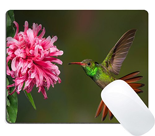 Wknoon Gaming Mouse Pad Custom Design, Cute Hummingbird and Pink Flowers Pattern, Non-Slip Thick Rubber Large Mousepad Mat