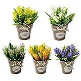 Blanketswarm 5 mini flores artificiales bonsái con maceta de plástico, plantas de bonsái falsas, arreglos florales para el hogar, boda, fiesta, oficina, centros de mesa de mesa de decoración