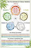 The World's Best Five Elements Wall Chart (The Five Elements of Chinese Medicine)
