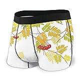 Web--ster Calzoncillos Boxer para Hombres, Colorido Tema de la Temporada de otoño Vivo Rowan Tree con Frutas y Hojas secas Gráfico Tamaño XL