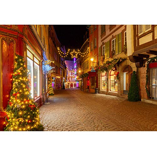 Haoyiyi 10x8ft Christmas Town Background Tree Lights Outdoor Backdrop Background Photography Girl Boy Xmas Eve Winter Party Desktop Photo Shoot Photobooth Photographers Wallpaper Pictures