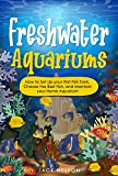 Freshwater Aquariums: How to Set Up your First Fish Tank, Choose the Best Fish, and Maintain your Home Aquarium