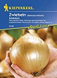 Zwiebeln Gemüsezwiebeln Exhibition