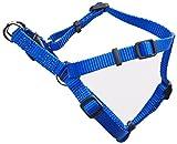 Coastal Pet Products DCP6345BLU Nylon Comfort Wrap Adjustable Dog Harness, 3/8-Inch, Blue