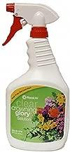 Crowning Glory Flower Spray 32 Fl. Oz