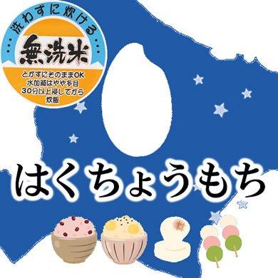 北海道産 無洗米 もち米 JA米 はくちょうもち 10kg 令和元年産