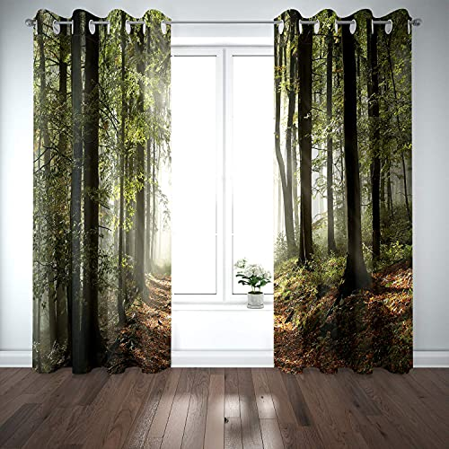 Wowzone - Cortinas Opacas para árbol de Bosque, Paisaje, Naturaleza, Aldea Rural, montañas, Paisaje Silvestre, Escena otoñal, Sala de Estar, recámara, Ventana (2 Paneles de 132 x 213 cm)