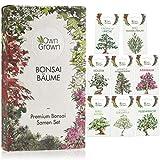 OwnGrown - Juego de semillas para bonsái (8 tipos de semillas de bonsáis, para cultivo de bonsáis, para el cultivo de bonsáis, para el jardín mini y zen