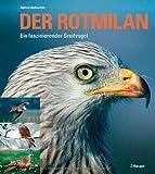 Der Rotmilan: Ein faszinierender Greifvogel - Adrian Aebischer