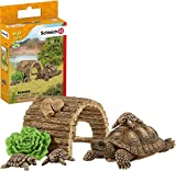 Schleich Wild Life 6-Piece Tortoise Toy Figure with Hatchlings and Turtle Home...