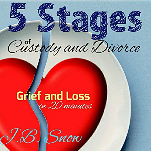 5 Stages of Custody and Divorce  audiobook cover art