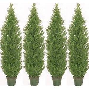 Silk Flower Arrangements Four 5 Foot Artificial Topiary Cedar Trees Potted Indoor Outdoor Plants