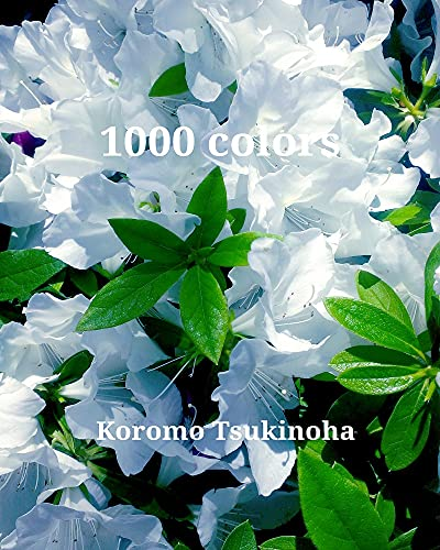 1000 colors