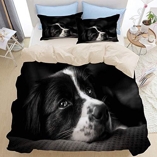 Juego de ropa de cama de 3 piezas, intensa emoción de perro, negro, blanco, borde, perrito, collie, mezcla, mascota, adulto, atento, diseño australiano, orejas, moderno, juego de funda nórdica con 2 f