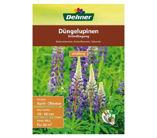 Dehner Saatgut, Gründüngung, Düngelupinen, 600 g, für ca. 30 qm