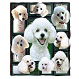ChriHome 3D Poodle Dog Blanket Cozy Plush Warm Blanket Throws for Travel Camping Sofa Couch Bedding Blanket Soft All Season Home Decor Blankets (60'' x 50'')
